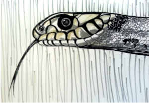 '[O]ut [ . . .] came the head and half the body of a huge gray snake. But the witch did not look round. It grew out of the tub, waving itself backwards and forwards with a slow horizontal motion, till it reached the princess, when it laid its head upon her shoulder, and gave a low hiss in her ear.'